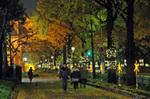 横浜 光のプロムナード.jpg
